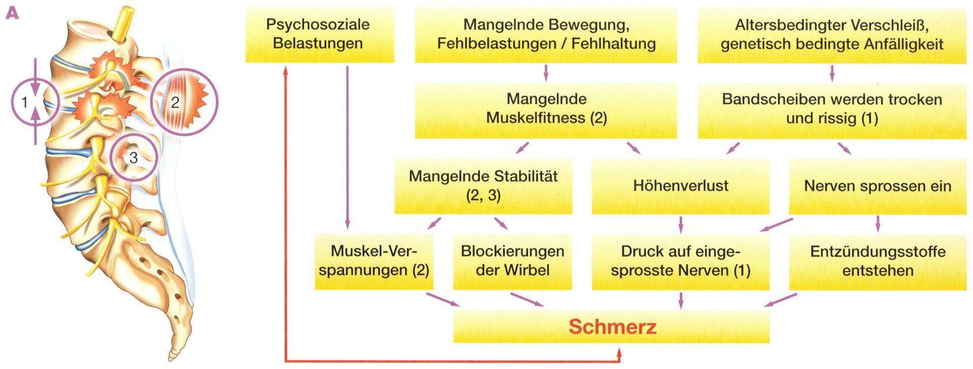 regionales Schmerzzentrum DGS- Diez